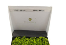 Wypełnij swoją przesyłkę ekologicznie